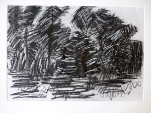 Ruth-McCabe.-Field-Edge.-Charcoal-and-Pastel